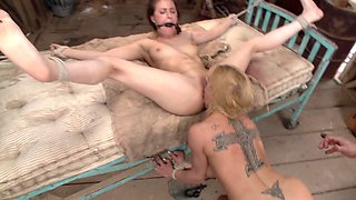 Casey Calvert and Dee Williams are tied up and fucked by Mr. Pete