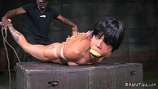 Black senorita is the subject of the hardcore BDSM basement action