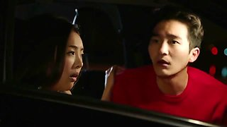 korean couple having rough sex in the car