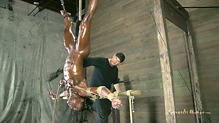 Oiled tied up ebony nympho hangs upside down and gets treated in hard mode