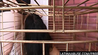 Caged 18 year old Latina throat abused & first time anal