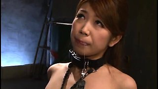 Submissive Oriental babes getting drilled deep and rough