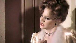 Dixie Ray Hollywood Star - 1983 Classic
