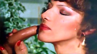 Porn From The Vault - Vol 2